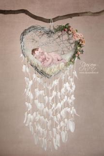 dromenvanger hart
